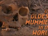 Oldest Mummies in the World