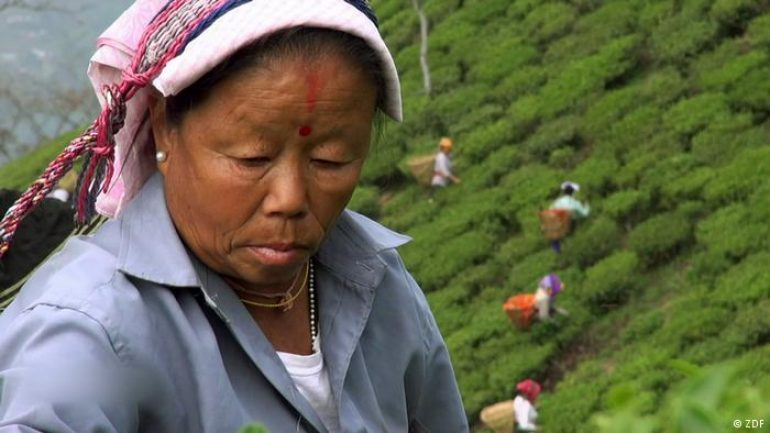 The Dark Side Of The Tea Trade