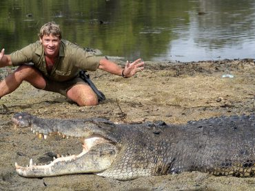 Steve Irwin: Crocs Down Under