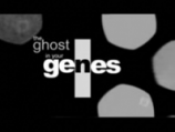 The Ghost in our Genes