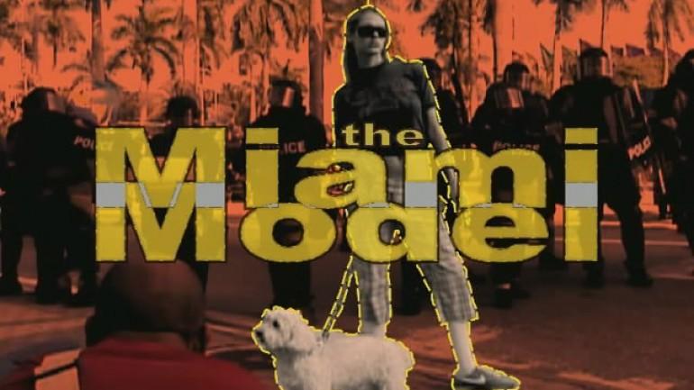 The Miami Model