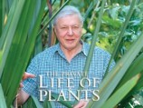 EP 1/6 The Private Life of Plants