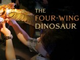 The Four-Winged Dinosaur