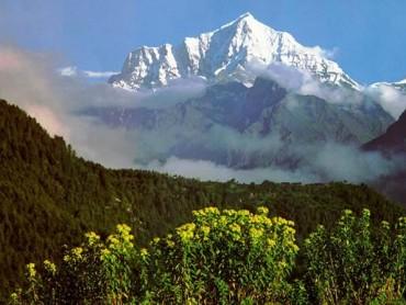 Lost Treasures of Tibet