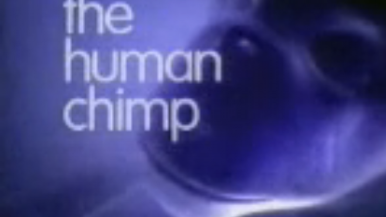 Oliver The Chimp | Documentary Heaven