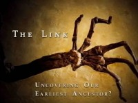 The Link: Uncovering Our Earliest Ancestors