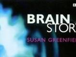 The Brain Story