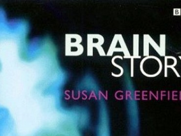 The Brain Story