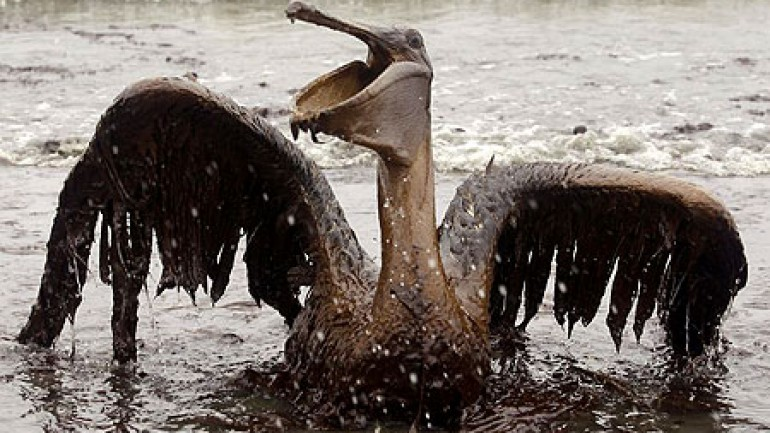 BP: $30 Billion Blowout