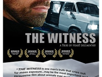 The Witness: A Tribe of Heart