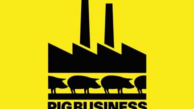 Pig Business
