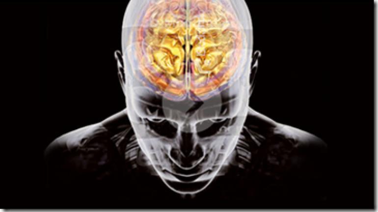 Stress Portrait of a Killer – Stress Portrait of a Killer Worksheet