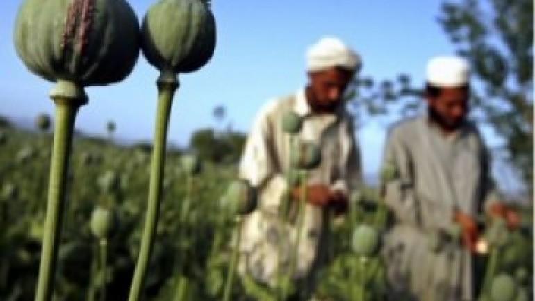 Afghan Heroin: The Lost War