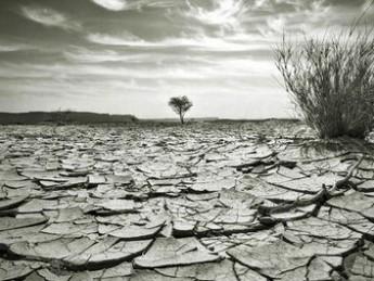 Meet The Climate Sceptics