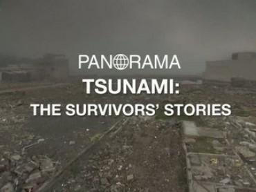 Japan Tsunami: The Survivors Stories