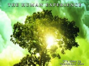 The Collective Evolution II: The Human Experience