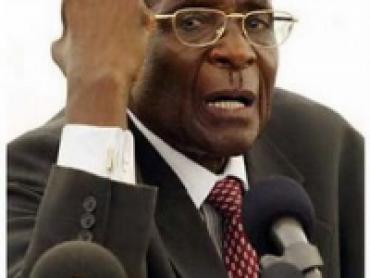 The Terror of Zimbabwe Documentary