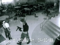 The Columbine Cause