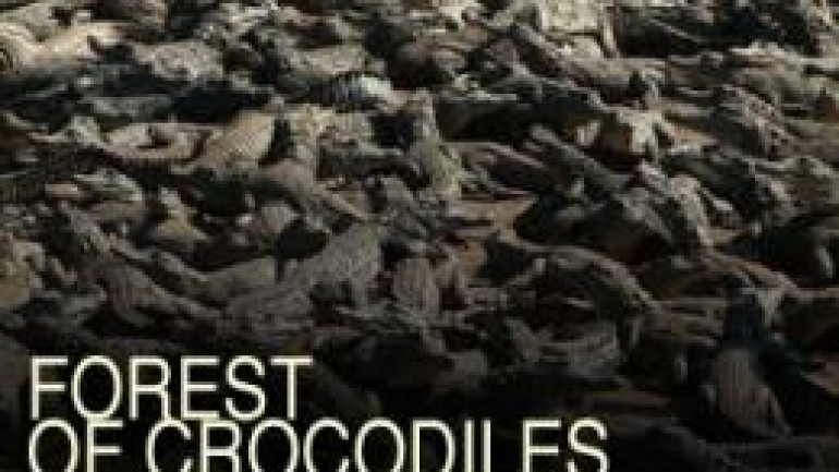 Forest of Crocodiles