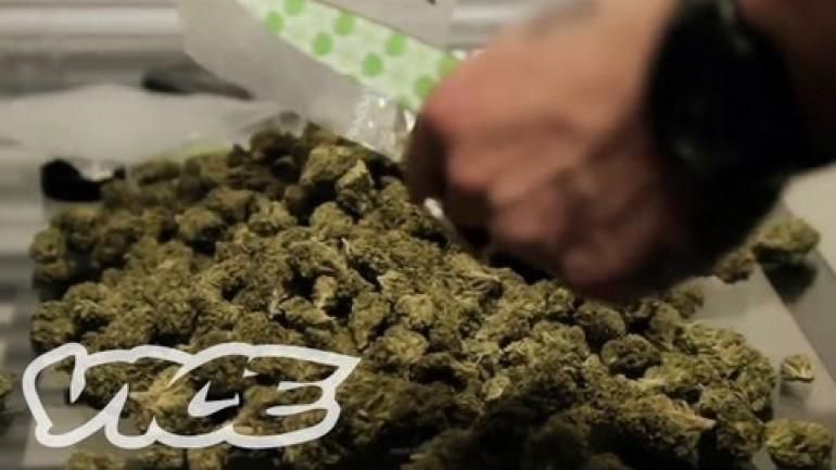 The Secrets of a Drug Dealer
