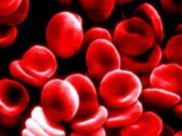 Autopsy: Emergency Room Massive Blood Loss