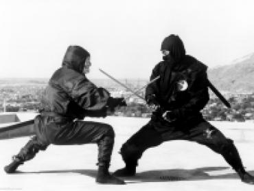 Ninja: Warriors of the Night
