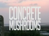 Mushrooms of Concrete