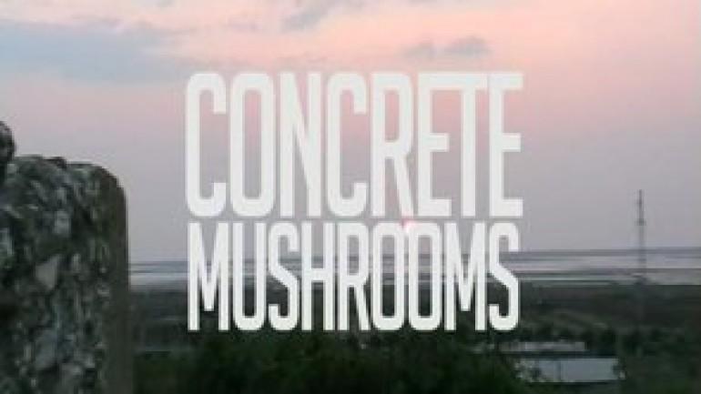 Mushrooms of Concrete