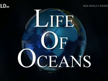 Life of Oceans