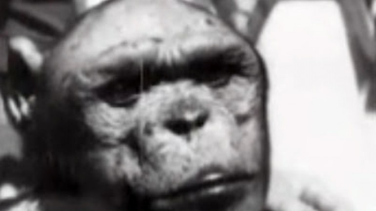 Stalin's Ape Man