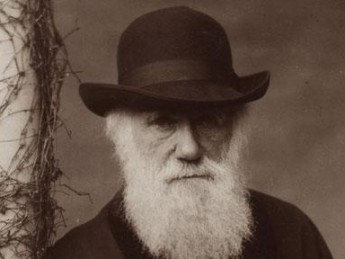 Darwin's Women