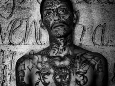 Los Zetas: The Criminal Syndicate