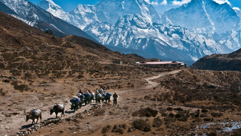 Nepal: in the Mountain's Shadow
