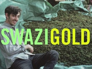 Swaziland: Gold Mine of Marijuana