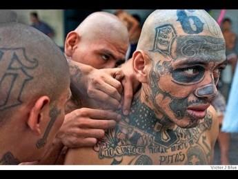 Gangs in Prison