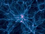 Evolution: The Minds Big Bang