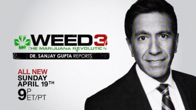 Weed 3: The Marijuana Revolution