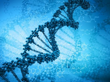 DNA: The Molecule of Life